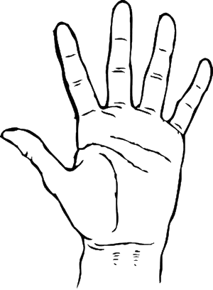 palm-hand.png